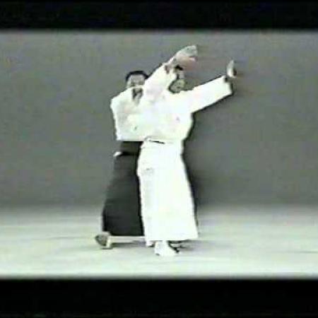 Hikitsuchi Ushiro kokyu nage